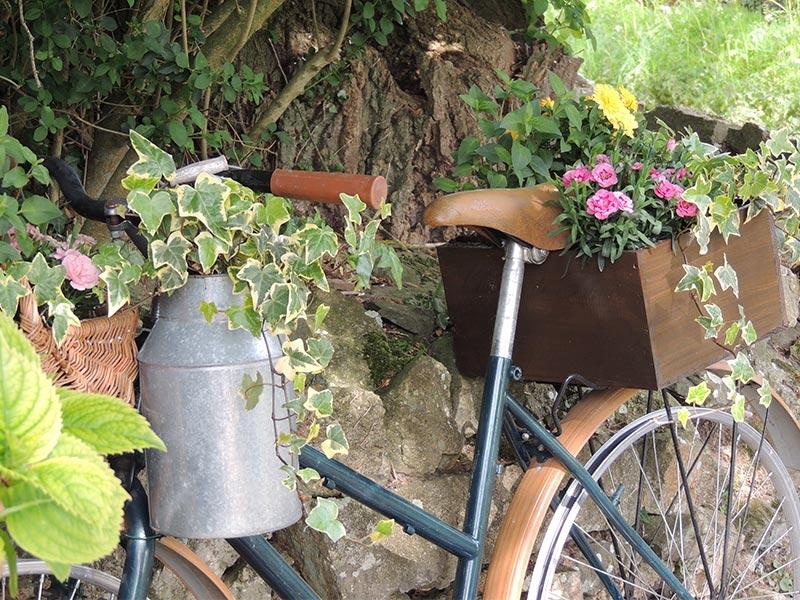 Le vélo oublié de l'entrée © Gite Les 3 Voiles